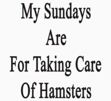 My Sundays Are For Taking Care Of Hamsters  by supernova23