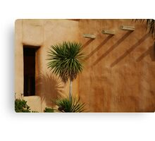 A Touch of Mexico Canvas Print