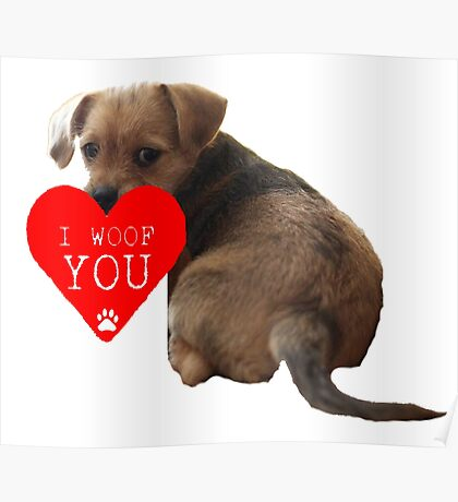 I Woof You Valentine Puppy Poster