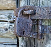 door shut by mrivserg