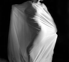 draped by jim painter