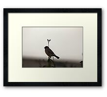 Guard Duty is rather dull... Framed Print