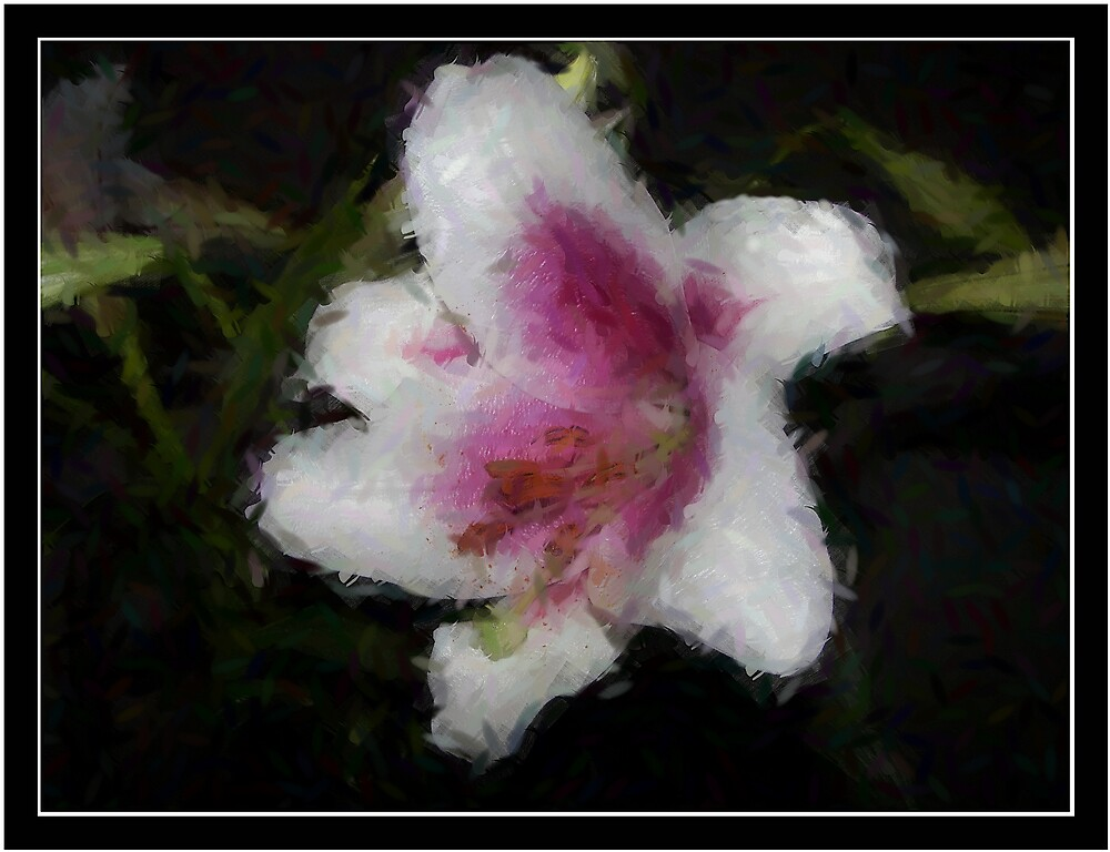 Oriental Lily by Lissy