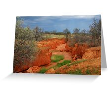 Natures Colours,OutbackAustralia Greeting Card