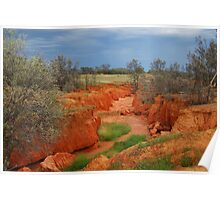 Natures Colours,OutbackAustralia Poster