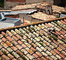 Old tiled roofs by mrivserg