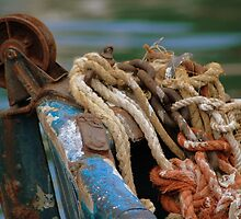 Rust Ropes and Ruggedness by Steven Zan