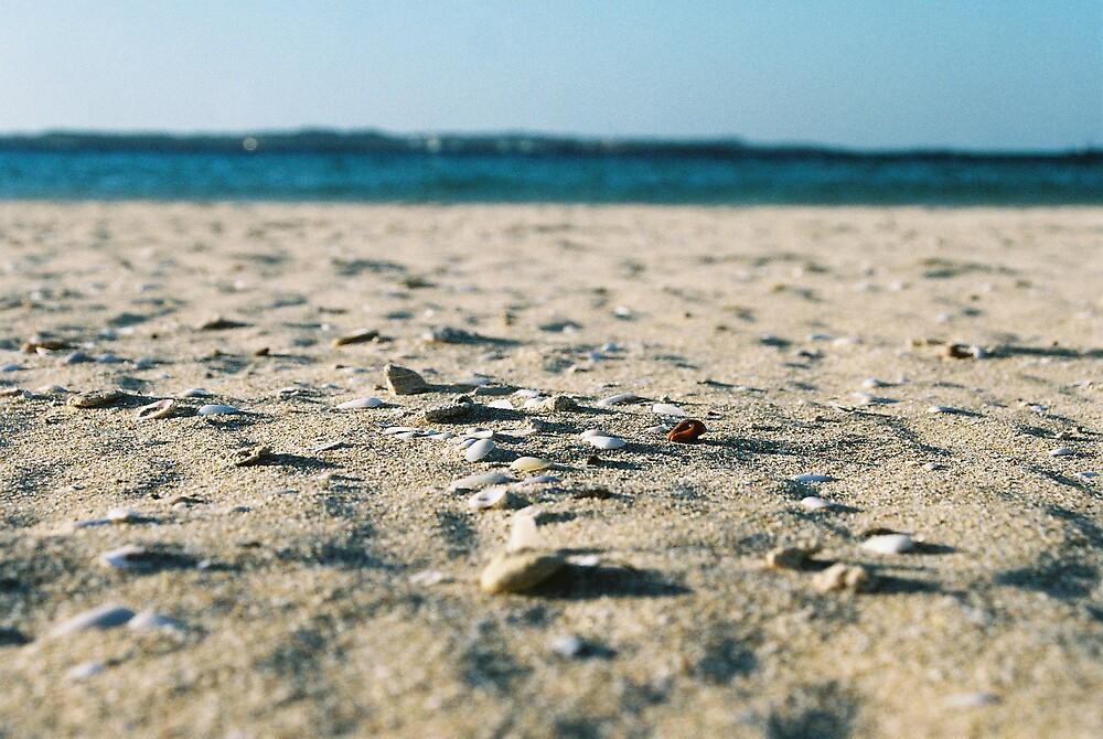sandy bits by dodgsun