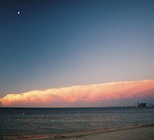 stormfront by dodgsun