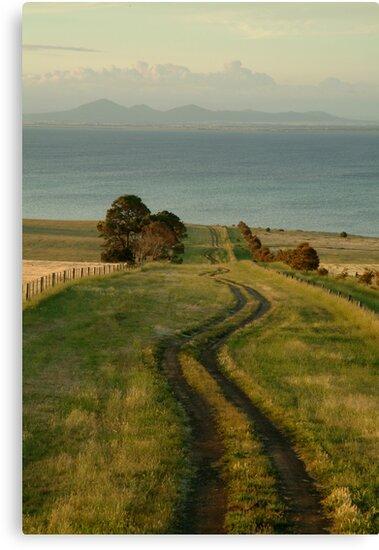 Spray Farm Lane by Joe Mortelliti