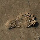 My Left Foot ? by Michael Eyssens