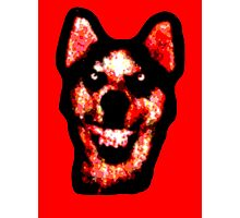 Smile Dog (CreepyPasta) Photographic Print
