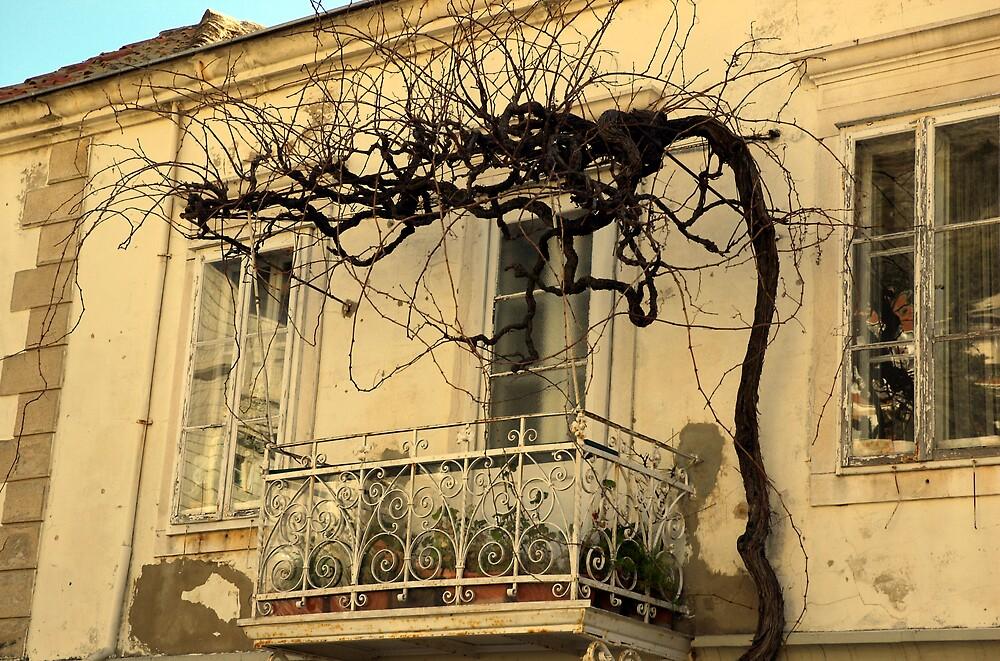 balcony by kenan