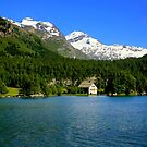 The Lake Sils by annalisa bianchetti