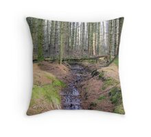 Bare trees in the wood Throw Pillow