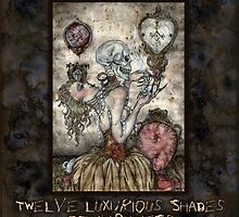Twelve Luxurious Shades Of Darkness by LadyFanhir