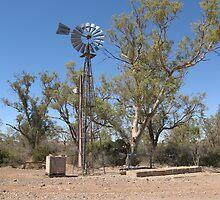 Windmill  Old Beltana  Flinders Ranges by langar