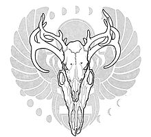 Deer Skull w/ Scarab by EmmaLynn Edwards