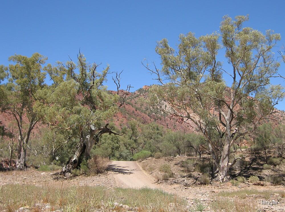 Heysen Trail  Flinders Ranges by langar