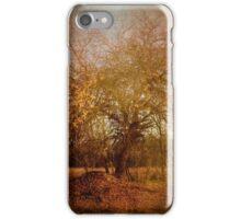 Golden November iPhone Case/Skin