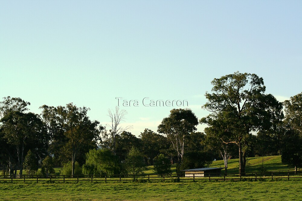 Richmond NSW by Tara Louise