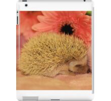Sleeping Baby Hedgehog iPad Case/Skin