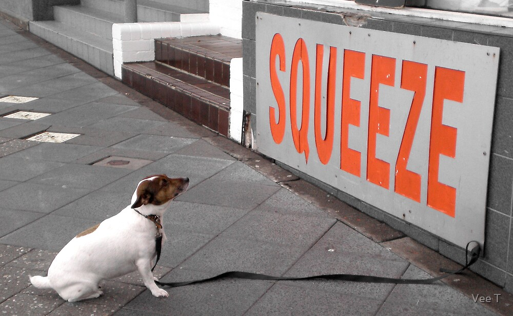 Squeeze by Vee T
