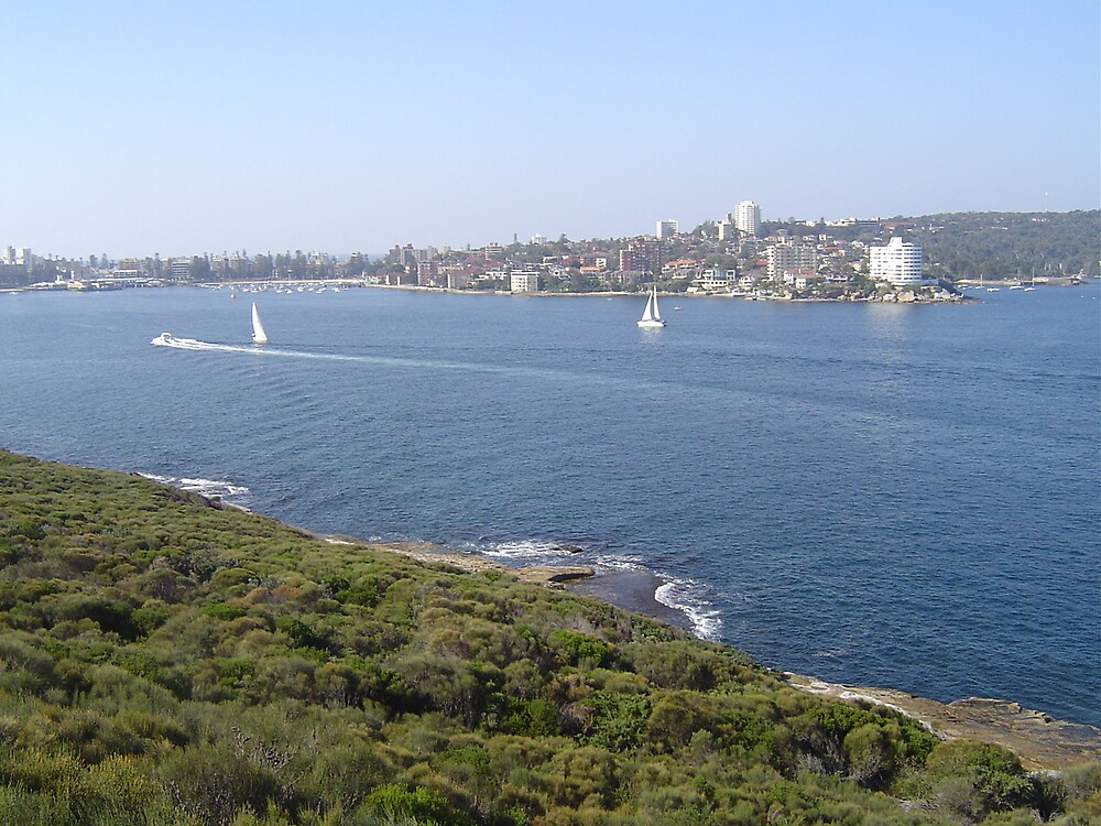 Manly view by judy