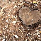 Natural Heart by Shannon Mowling