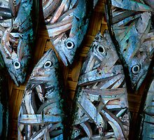 FISH EAT FISH by louise
