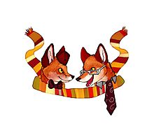 Fandom Foxes - Who? Photographic Print