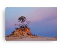 Mungo rock and tree Canvas Print