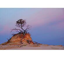 Mungo rock and tree Photographic Print