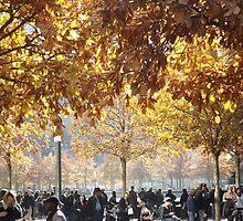 Autumn Colors, 9/11 Memorial and Park, Lower Manhattan, New York City by lenspiro