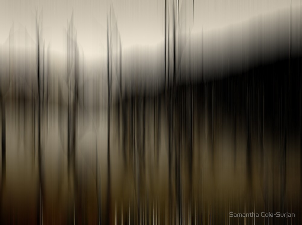 Desolate by Samantha Cole-Surjan