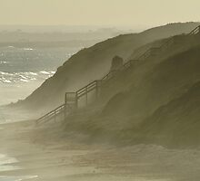 Sea Spray 13th Beach,Bellarine Peninsula by Joe Mortelliti