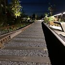 High Line at Night, New York City's Elevated Park and Garden by lenspiro