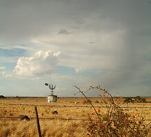 Passing Rain,Geelong District by Joe Mortelliti