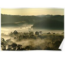Valley Fog,Dollar, Gippsland Poster