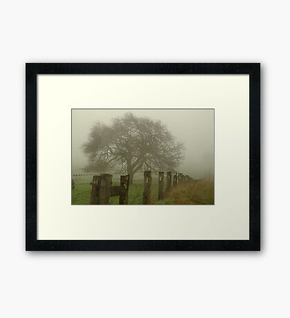 Foggy Morning, Macedon Ranges Framed Print