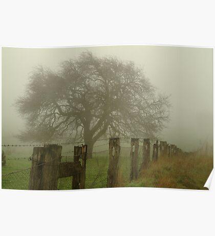 Foggy Morning, Macedon Ranges Poster