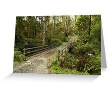 Bridge Track, Otway Ranges Greeting Card