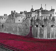Blood Swept Lands And Seas of Red by SteveHphotos