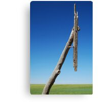 Old Telegraph Pole, Mallee rustic timber Canvas Print