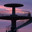 Lookout Tower Geelong by Joe Mortelliti