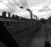 Auschwitz - Barbed Wire by ransleydale