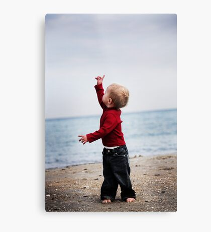 Look! Up in the sky! Metal Print