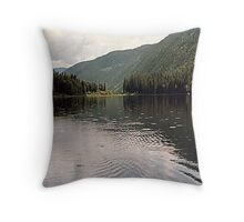 rising to the hatch Throw Pillow