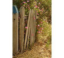 Garden Gateway,Batesford Photographic Print