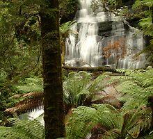 Triplet Falls Otway Ranges by Joe Mortelliti